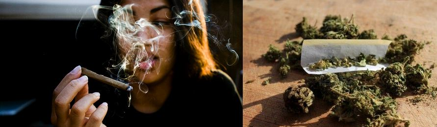 10 Health Side Effects of Using Marijuana
