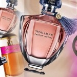 Stunning Winter Perfume Brands: Mark Jacob, Fendi, Diesel, Burberry & More!